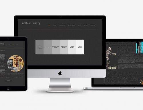 Web Design Fine Art Arthur Taussig