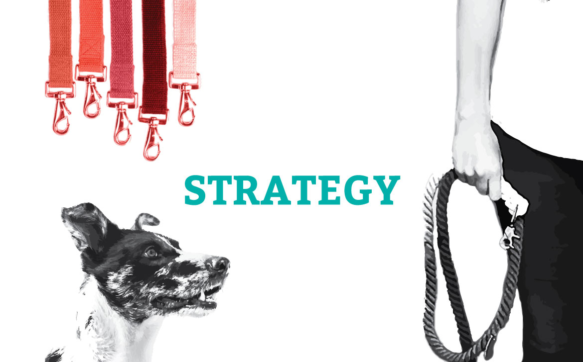 graphic-advetisement-strategy-flux-appeal-pet-marketing-michele-alise
