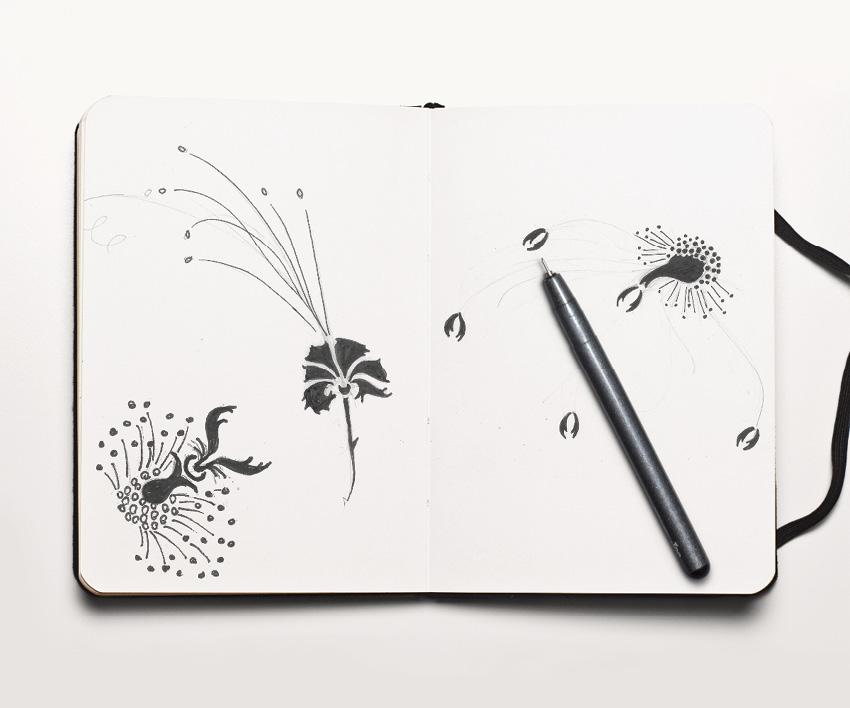 botanical-illustration-michele-alise-fraichard-flux-appeal